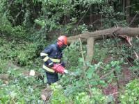 Polámané stromy, popadané větve a poškozené střechy