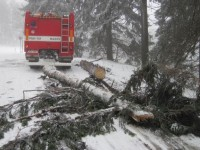 Zasahující hasiče ohrožovaly padající stromy